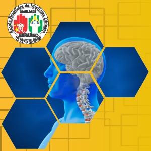 Acupuntura Clínica ou Avançada – Módulo de Neurologia 2