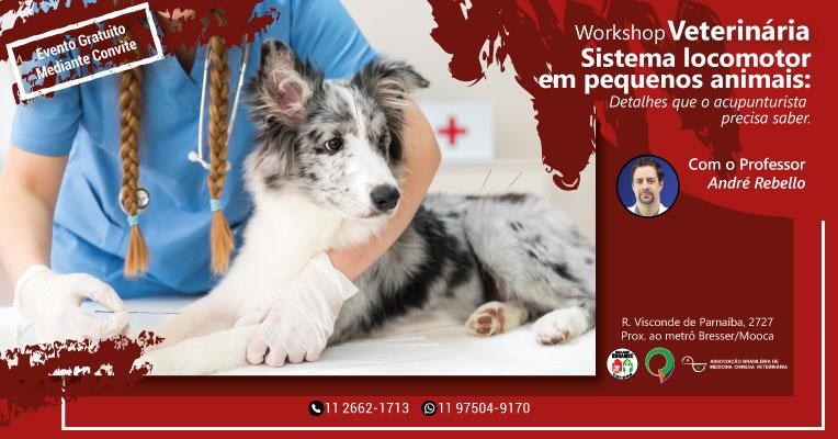 Workshop-Med.-Veterinaria-sITE